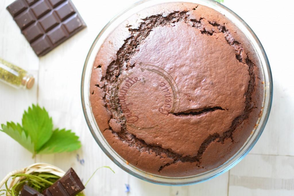 Gâteau au yaourt et chocolat de P.C. (4)